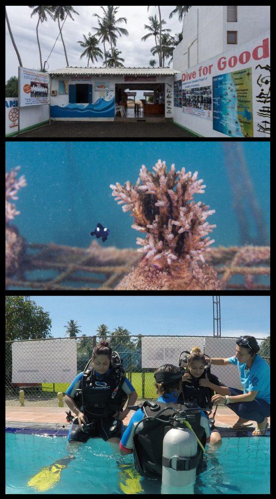 dive for good dykkesenter hikkadu