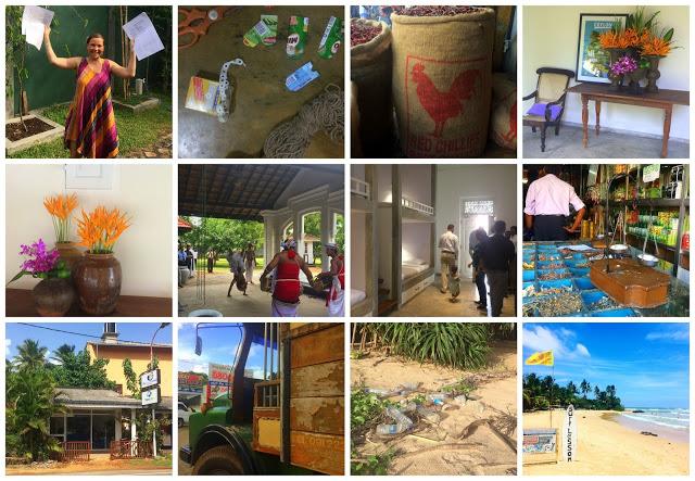 Juni Blogg flytte til Sri Lanka