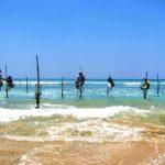 Styltefiskere. Noe av det du kan oppleve som en dagstur fra Hikkaduwa.