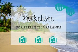 Lurer du på hva du skal ha med på ferien til Sri Lanka? Her finner du pakkeliste.