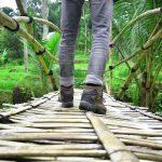 Spennende gåtur i regnskogen på Sri Lanka
