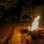 Yala Safari Camping Book with Norlanka Travels