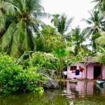 Båttur på Madu River, en kort dagstur fra Hikkaduwa