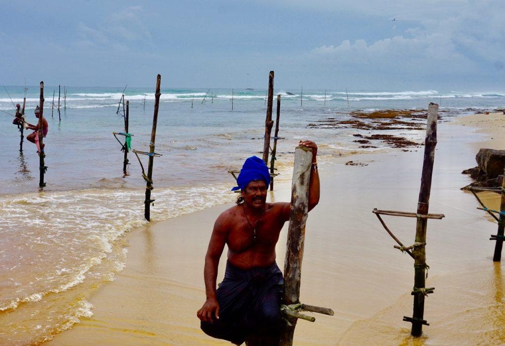 styltefisker stilt Sri Lanka