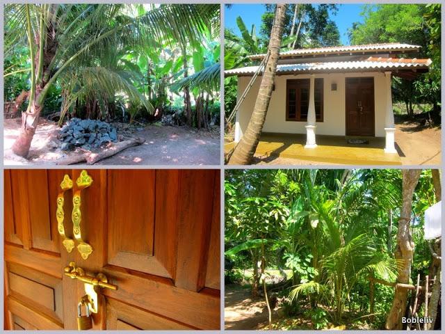 Huset vårt Flytte til Sri Lanka