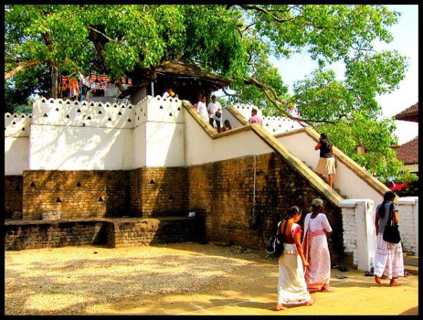 Tanntempelet Kandy