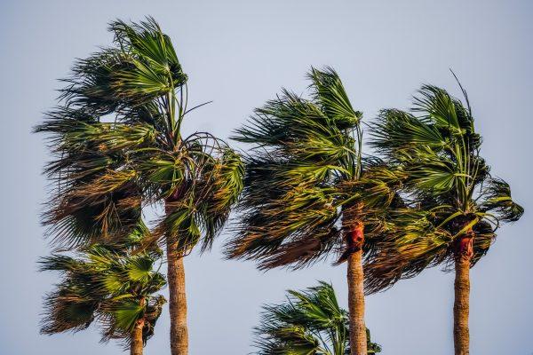 Trposik storm vær klima Sri Lanka