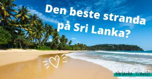 Den beste stranda på sri Lanka