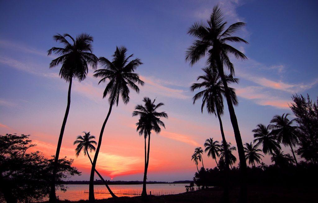 Trygge på Sri Lanka