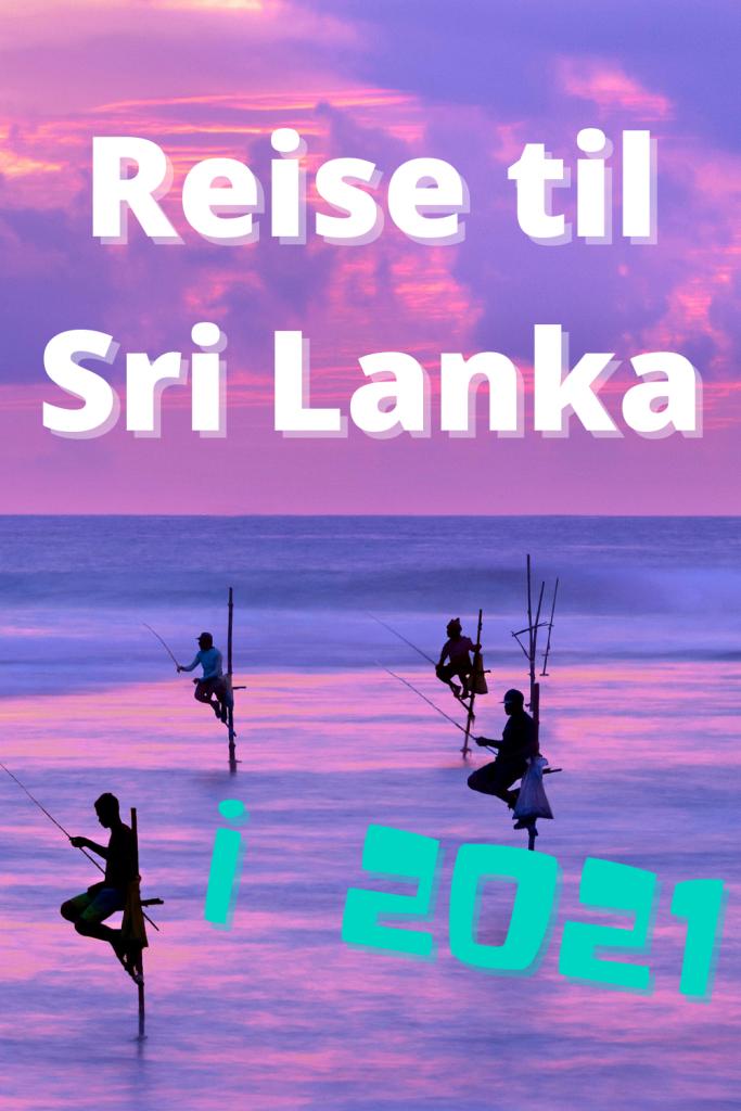 Reise til Sri Lanka i 2021