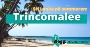 Sri Lanka på sommeren